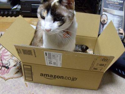 Amazon_nuko